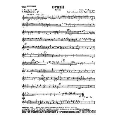 brasil-brazil-amor-amor-amor