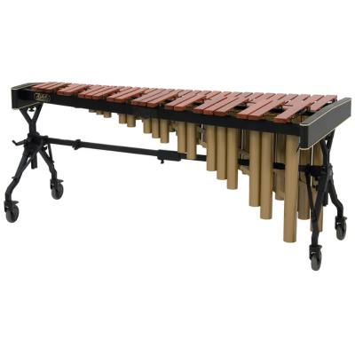 picture/adamsmusicalinstruments/2mbc2apv43.jpg