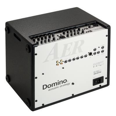 picture/aroundmusic/domino2a.jpg