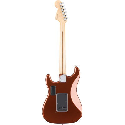 picture/fender/0147302384.png