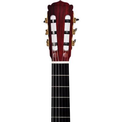 picture/hanikagitarren/58pfcocobolov2.jpg