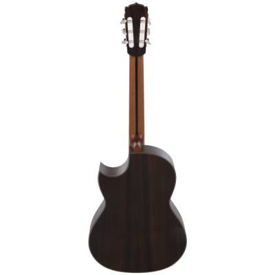 picture/hanikagitarren/basiscutpf2016_p02.jpg