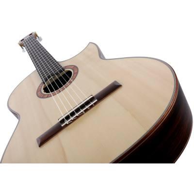 picture/hanikagitarren/basiscutpf2016_p04.jpg
