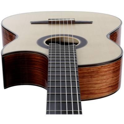 picture/hanikagitarren/cutpropf_p02.jpg