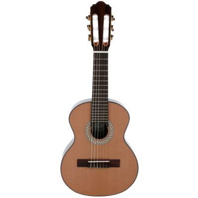 picture/hopfdieter/og60oktavgitarre.jpg