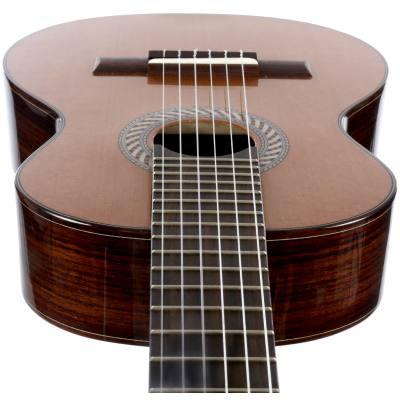 picture/hopfdieter/og60oktavgitarre_p02.jpg