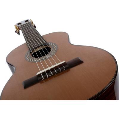 picture/hopfdieter/og60oktavgitarre_p03.jpg
