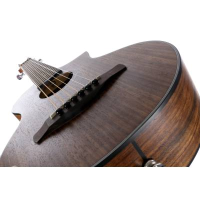 picture/meinlmusikinstrumente/ewp14wbopn_p06.jpg