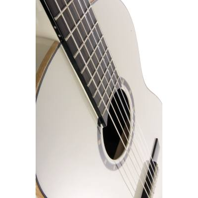picture/meinlmusikinstrumente/r12134wr_p10.jpg