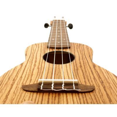 picture/meinlmusikinstrumente/rfu10z_p22.jpg