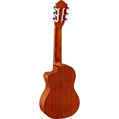 picture/meinlmusikinstrumente/rgl5ce_p01.png