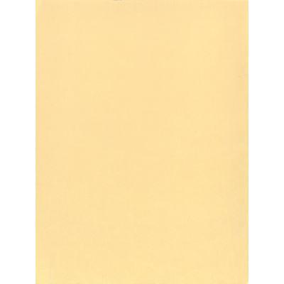 texas-train