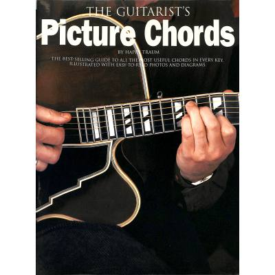 the-guitarist-s-picture-chords
