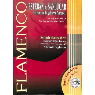 maestro-de-la-guitarra-flamenca