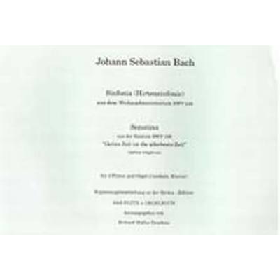 sinfonia-weihnachtsoratorium-bwv-248-
