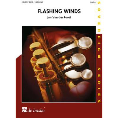 flashing-winds