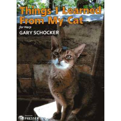 Things I learned from my cat