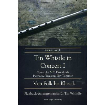 tin-whistle-in-concert-1