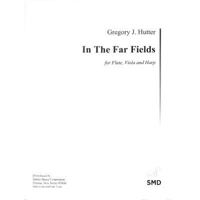 in-the-far-fields
