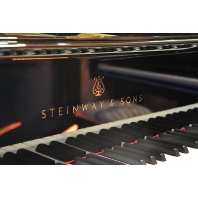 picture/norberthahnmusikinstrumentegroc383c283c382c29fundeinzelhandel/steinway26sonso180_p02.jpg