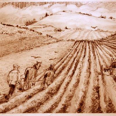 we-plough-the-fields-and-scatter