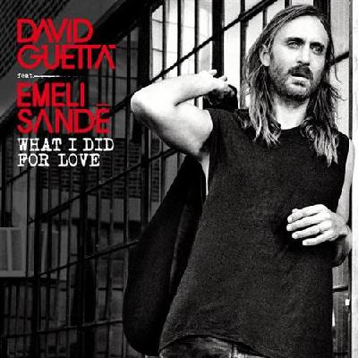 What I Did For Love (feat. Emeli Sandé) David G...