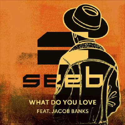 What Do You Love (feat. Jacob Banks) Seeb