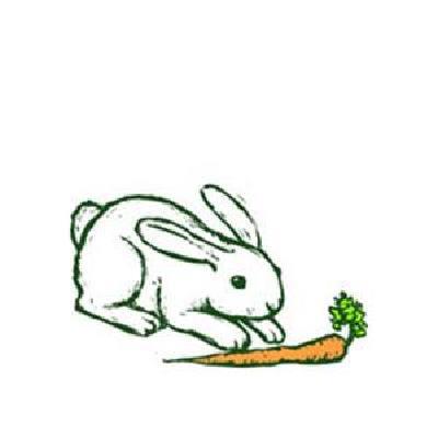 Oh, John The Rabbit (arr. Robert I. Hugh) Tradi...