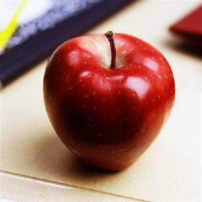 teacher-s-pet