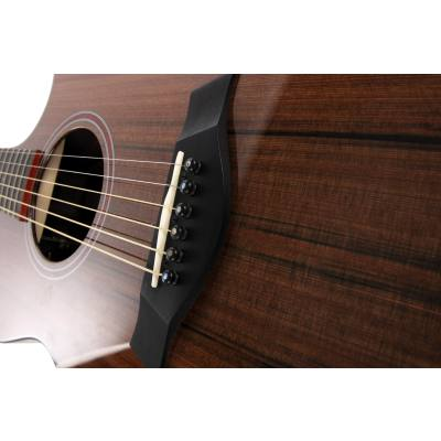 picture/taylorguitars/customgcbto6920n10.jpg