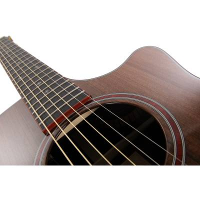 picture/taylorguitars/customgcbto6920n11.jpg