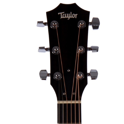 picture/taylorguitars/f100002111015151000_p05.png