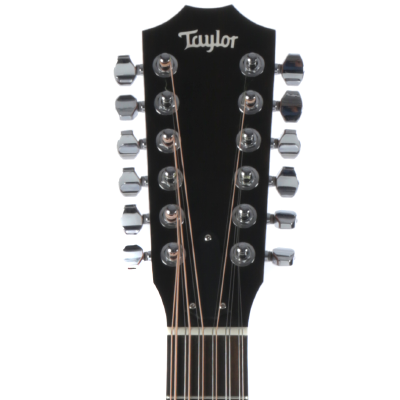 picture/taylorguitars/f100100011005151000_p04.png