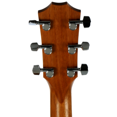 picture/taylorguitars/f200002111004872000_p04.png
