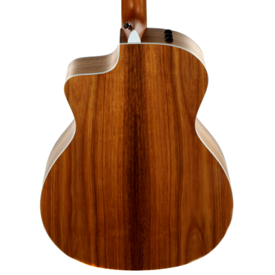 picture/taylorguitars/f200002111004872000_p05.png