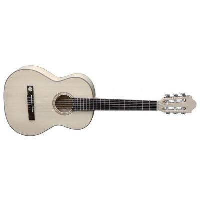 picture/trekel/gitarrepronaturasilverahor_p01.jpg