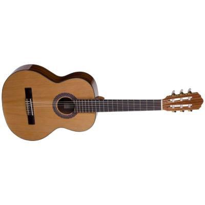 picture/trekel/gitarresiena560pc.jpg
