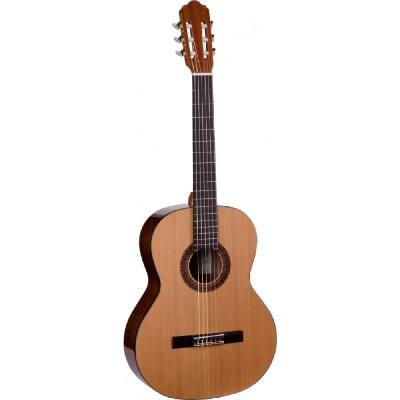 picture/trekel/gitarresiena650pc.jpg