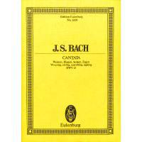 KANTATE 12 WEINEN KLAGEN SORGEN ZAGEN BWV 12