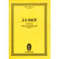 KANTATE 56 ICH WILL DEN KREUZSTAB GERNE TRAGEN BWV 56