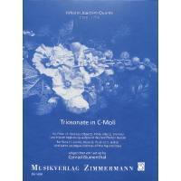 Triosonate c-moll