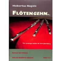 FLOETENGEHN - 4 GROOVIGE STUECKE