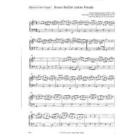 picture/mgsloib/000/020/419/Jesus-bleibet-meine-Freude-Kantate-BWV-147-PROSPECT-55044-0000204193.jpg