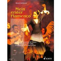 Mein erster Flamenco