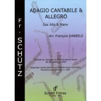 Adagio cantabile + Allegro