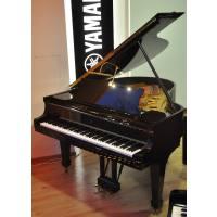 picture/norberthahnmusikinstrumentegroc383c283c382c29fundeinzelhandel/steinway26sonso180.jpg