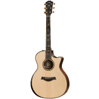 picture/taylorguitars/914ce.png