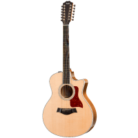 picture/taylorguitars/a402104111000040000_p01.png