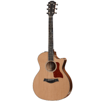 picture/taylorguitars/a501002111000110093.png