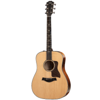 picture/taylorguitars/a601000011003697122_p01.png